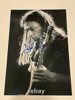 David Gilmour / Pink Floyd Hand-signed 12x8 Photo Autograph