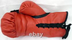 Floyd Mayweather Jr. Autographed Everlast Boxing Glove Rh Tbe Beckett 159650