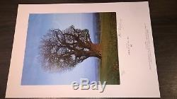 Storm Thorgerson Tree of Half Life rare signed art print 482/500 Pink Floyd